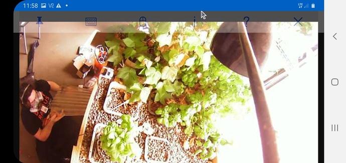 Screenshot_20200926-115820_VNC Viewer